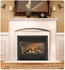 Picture of Napoleon GD33NR DV Fireplace (Rear Vent)