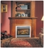 Picture of Napoleon GD34NT DV Fireplace (Top Vent)